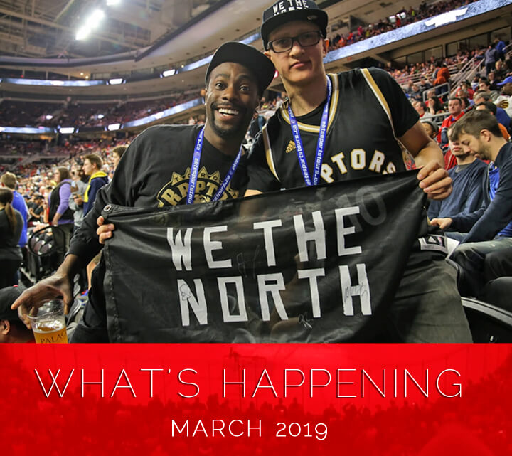 What's Happening At Elite Sports Tours March 2019