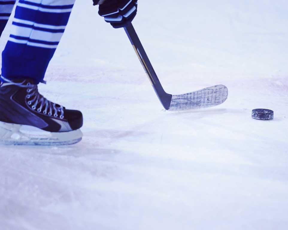 Where do the Arizona Coyotes play hockey?
