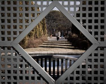Things to Do in Denver - The Denver Botanic Gardens