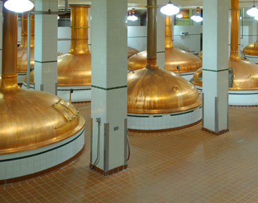 Things to Do in Denver - Coors Brewery Tour