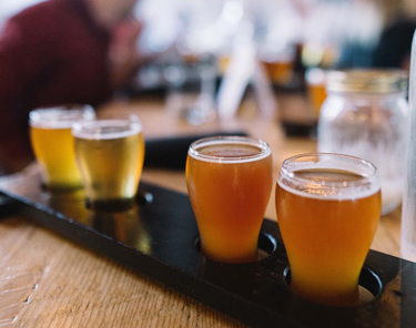 Things to Do in Winnipeg - Beer Tasting Tour