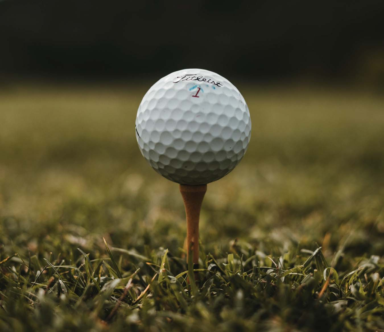 Things to Do in Tampa Bay - Golf in Tampa