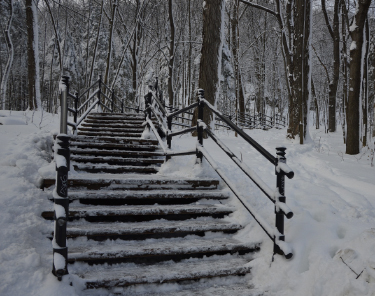 Things to Do in Montreal - Mount Royal
