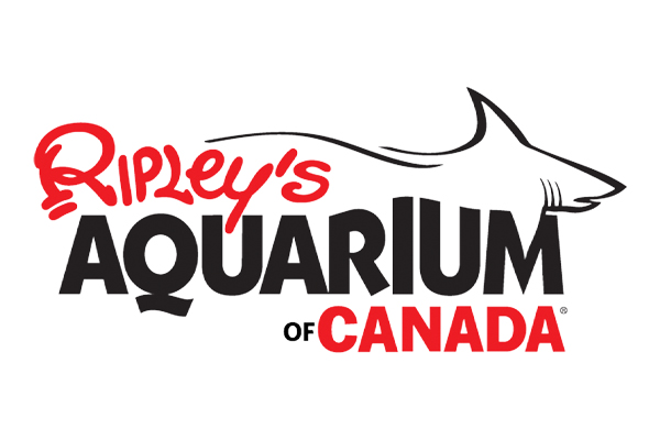 Things to Do in Toronto - Ripley's Aquarium of Canada