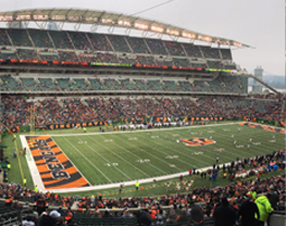 Dallas Stars at Cincinnati Bengals