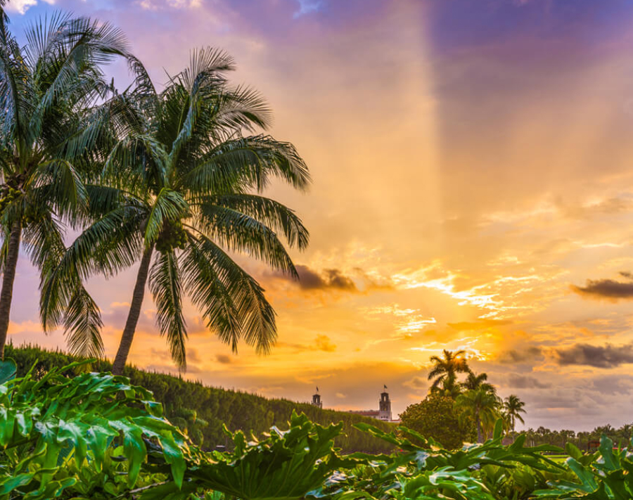 Sunrise Florida Sports Travel Packages