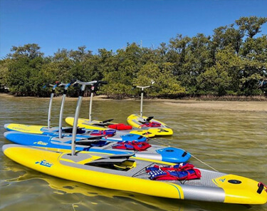Things to Do in Tampa Bay - Walk on Water Pedalboard Tours