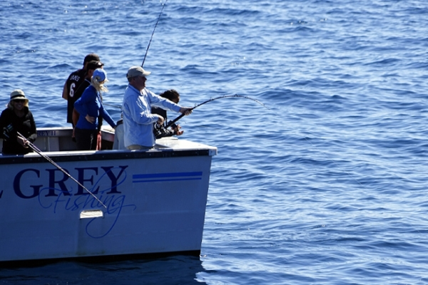 Things to Do in Miami - Deep Sea Fishing